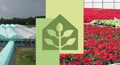 Harster Greenhouses