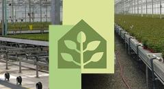 Aldershot Greenhouses