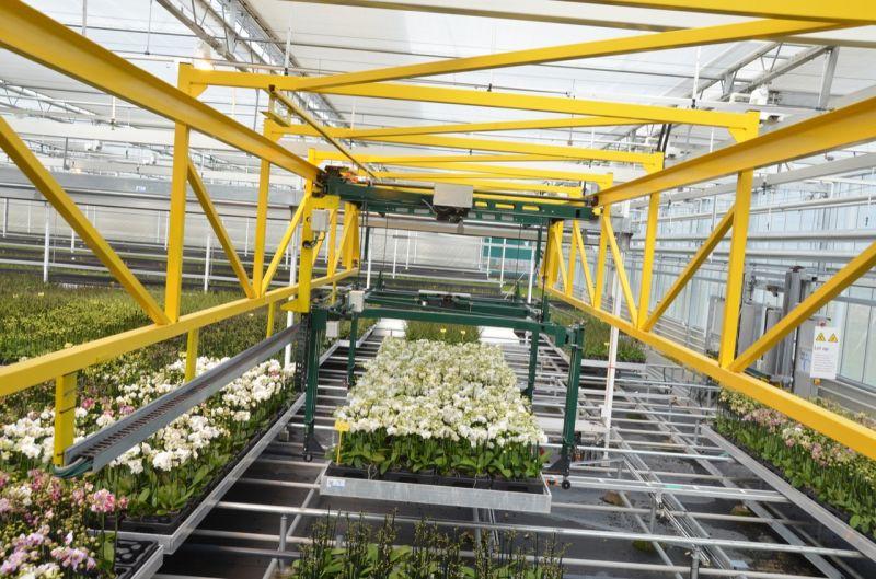 Automatic Greenhouse Overhead Cranes